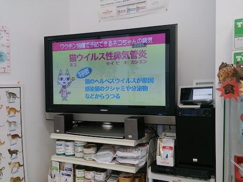 DSC_1705.jpg