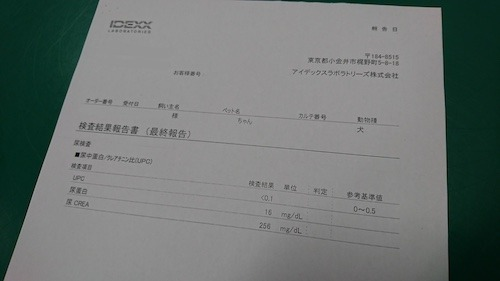 DSC_2167.jpg