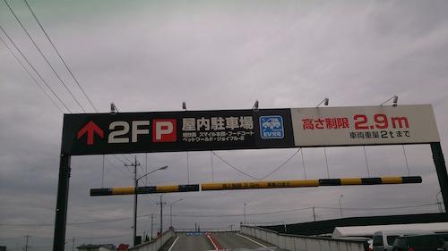 DSC_5241.jpg