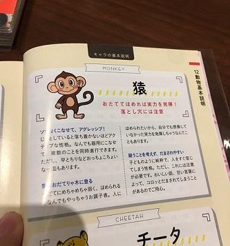 S__74784772.jpg